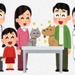 [悲報]  中国、遂に気が狂って犬・猫を惨殺してしまう・・。怖過ぎる。