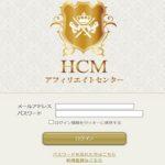 HCM アフィリエイトセンター  与沢翼ホールディングス 株式会社オールオブミー 株式会社ビジトリー エキスパートメール事業部