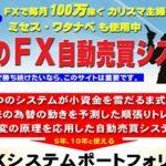 FXシステムポートフォリオ アクトマーケティング株式会社 石井秀樹  ミセス渡邊
