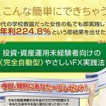 株式会社ライズ 田中恵美 FXで年金2000万問題を解決する?
