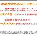 kagayaki-info.pu-sanfx.com 株式会社ベアードライン 熊木章人