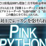 FX革命PINKPYTHON 合同会社ネクストイノベーション  阿部雄太